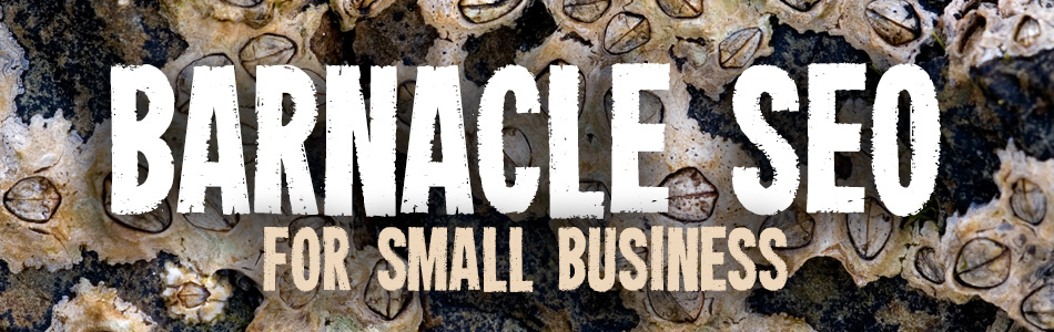 barnacle seo for small business